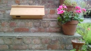 Swift Nesting Boxes