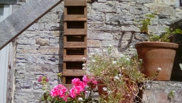 Long Wall Planters